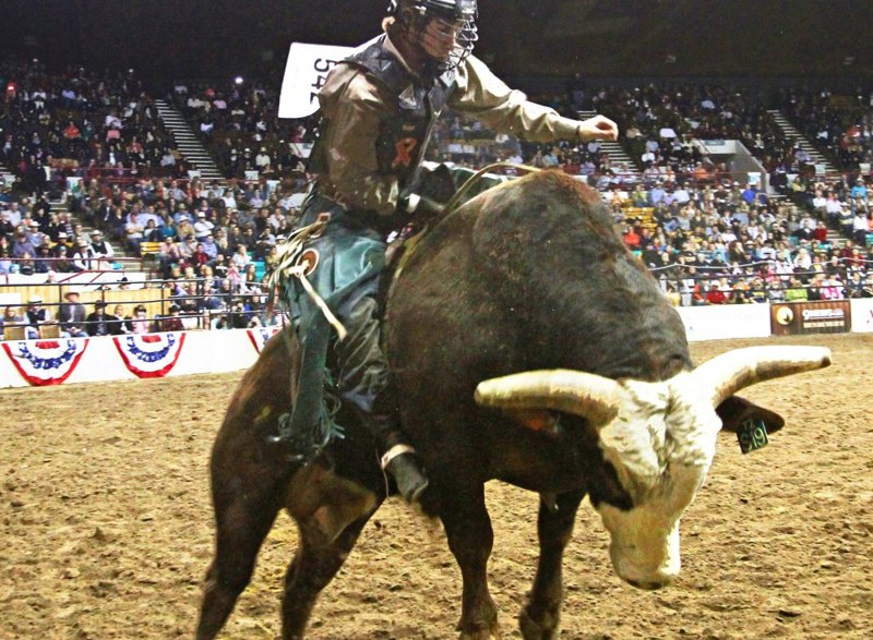 Should rodeo be banned?