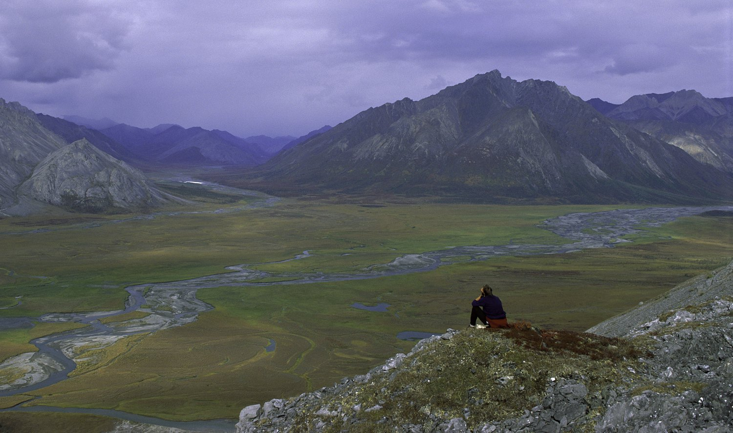 Should the Arctic National Wildlife Refuge be opened to oil drilling?