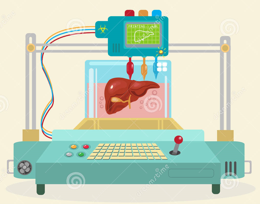 Will replicated organs be an affordable option in the future?